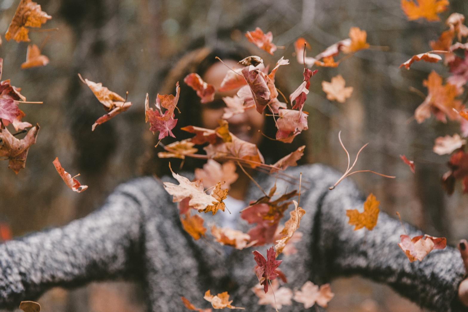 friends fall season